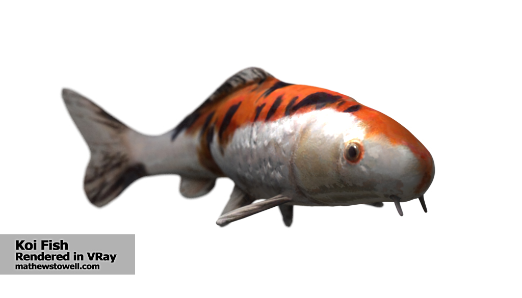 3d-animated-koi-fish