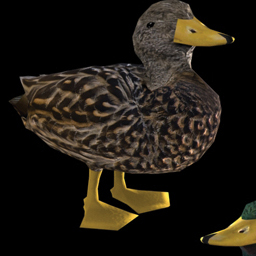 3D Mallard and Rubber Duckie